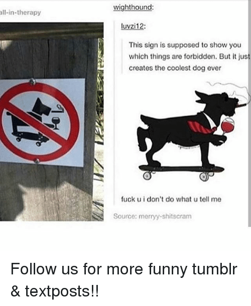Funny, Memes, and Tumblr: wighthound  ll-in-therapy  luvzi12:  This sign is supposed to show you  which things are forbidden. But it jus  creates the coolest dog ever  fuck u i don't do what u tell me  Source: merryy-shitscram Follow us for more funny tumblr & textposts!!