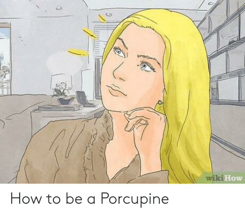 How To, Wiki, and How: wiki  How How to be a Porcupine