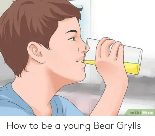 Bear, How To, and Wiki: wiki  How How to be a young Bear Grylls