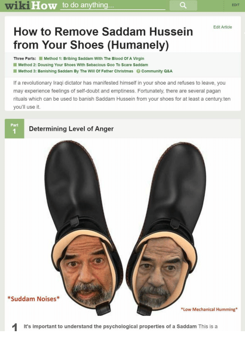 6bbbb98f3df wikiHow to Do Anything EDIT Edit Article How to Remove Saddam ...