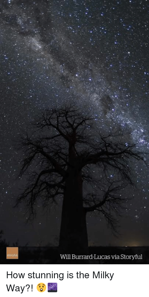 Milky Way, How, and Lucas: Will Burrard-Lucas via Storyful How stunning is the Milky Way?! 😲🌌