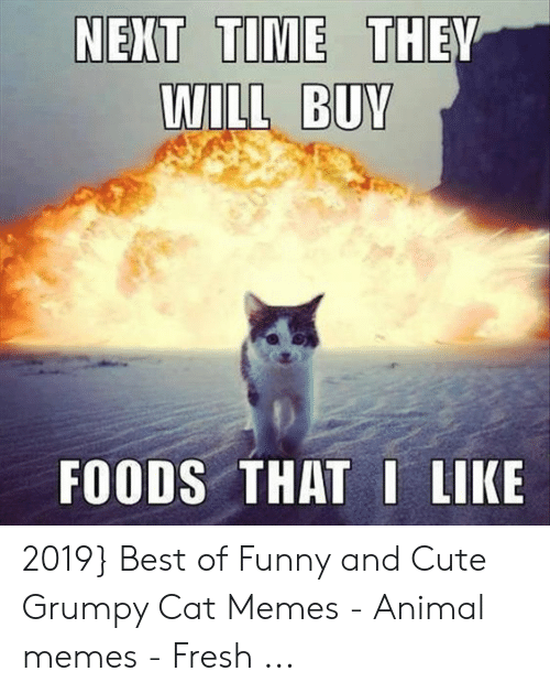 Will Buv Foods That I Like 2019 Best Of Funny And Cute