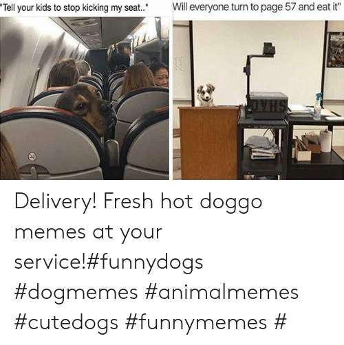 "Fresh, Memes, and Kids: Will everyone turn to page 57 and eat it""  Tell your kids to stop kicking my seat."" Delivery! Fresh hot doggo memes at your service!#funnydogs #dogmemes #animalmemes #cutedogs #funnymemes #"