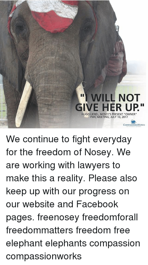 WILL NOT GIVE HER UP HUGO LIEBEL NOSEY'S PRESENT OWNER FWC