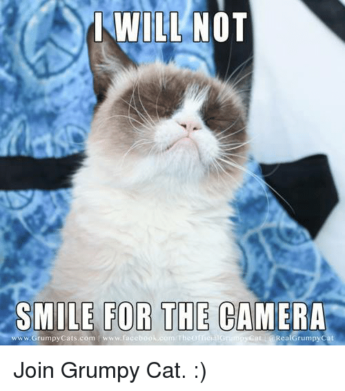 Grumpy Cat, Cat, and Facee: WILL NOT  SMILE FOR THE CAMERA  com T  Rea Grumpy Cat  www.Grumpy Cats.com www.face Join Grumpy Cat. :)