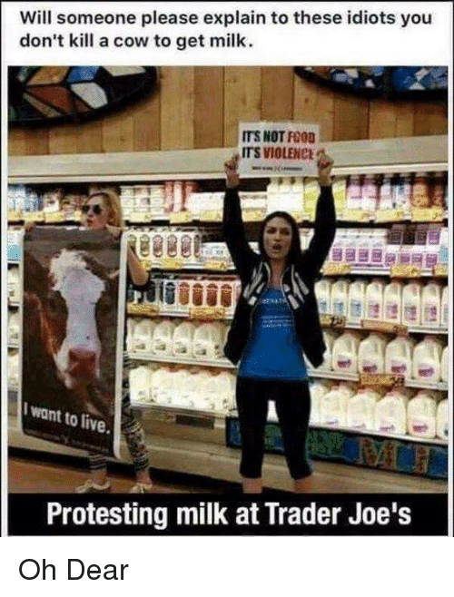 Funny, Live, and Trader Joes: Will someone please explain to these idiots you  don't kill a cow to get milk.  ITS NOT FO0  ITS VIOLENCE  Iwant to live  Protesting milk at Trader Joe's Oh Dear