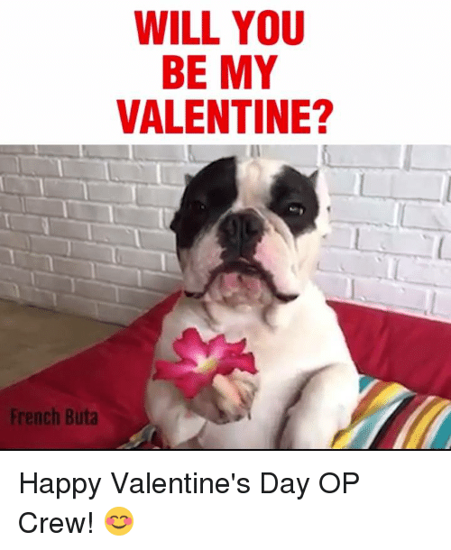 Will You Be My Valentine French Buta Happy Valentines Day Op Crew