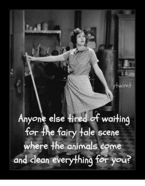 Animals, Memes, and Waiting...: wim  Anyone else Hired of waiting  for the fairy tale scene  where the animals some  and clean everything for you?  wartin