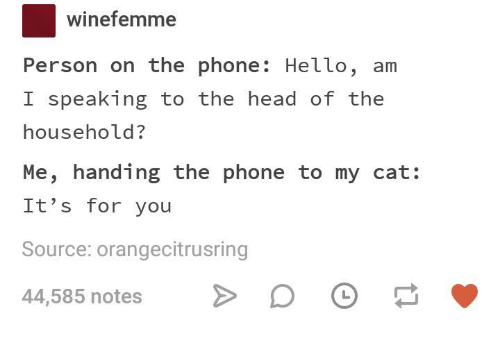 winefemme-person-on-the-phone-hello-am-i