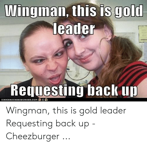 Wingman This Is Gold Leader Requesting Back Up