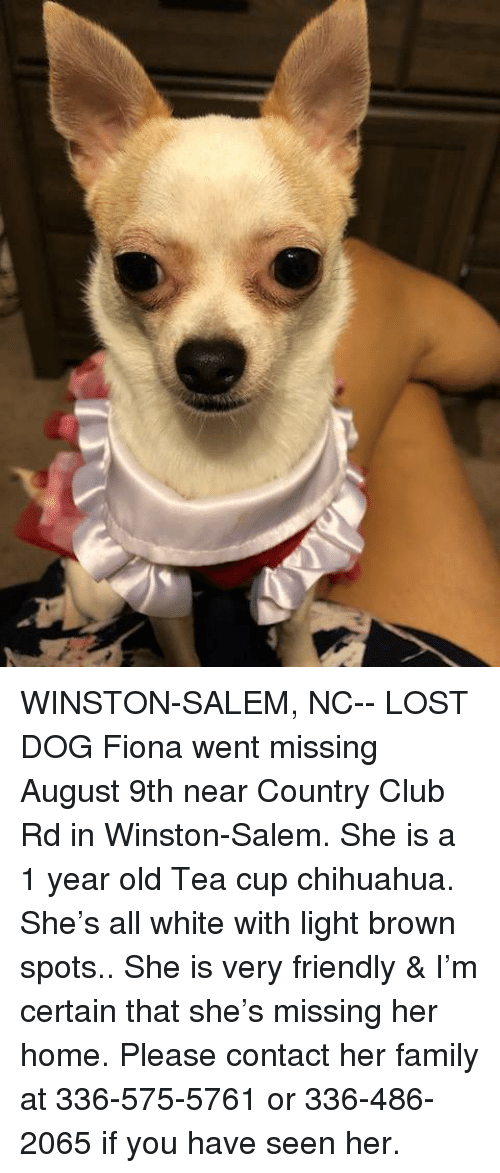 Winston Salem Nc Lost Dog Fiona Went Missing August 9th Near