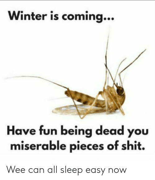 Wee, Winter, and Sleep: Winter is coming...  Have fun being dead you  miserable pieces of shit. Wee can all sleep easy now