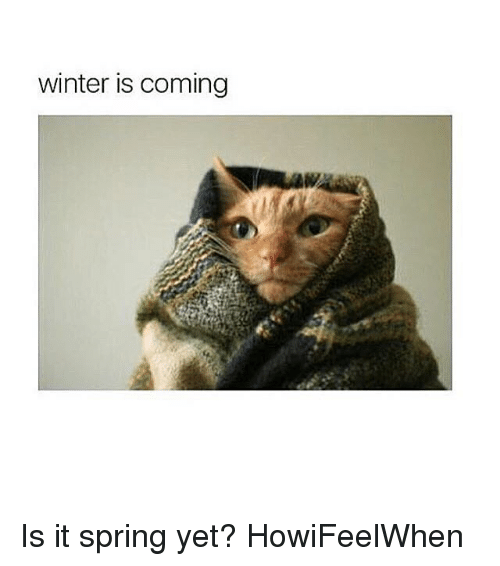 Winter Is Coming Is It Spring Yet Howifeelwhen Funny Meme On Meme