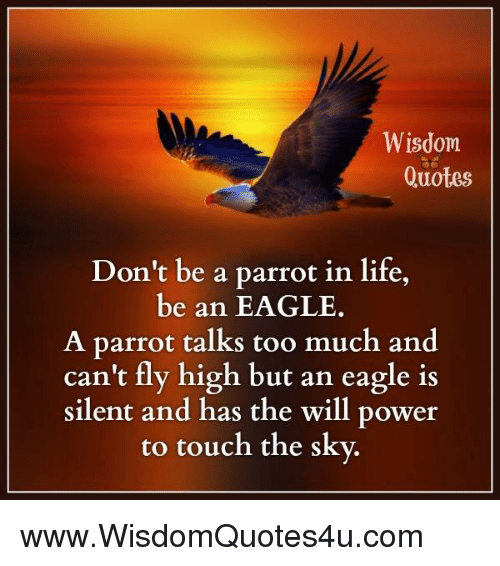 Wisdom Quotes Don T Be A Parrot In Life Be An Eagle A