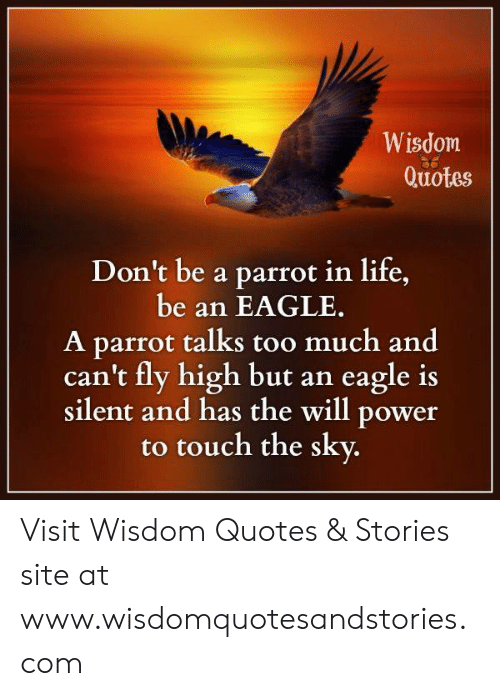Wisdom Quotes Don't Be a Parrot in Life Be an EAGLE a Parrot