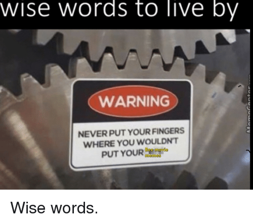 Memes, Live, and Never: wise words to live by  WARNING  NEVER PUT YOUR FINGERS  WHERE YOU WOULDNT  PUTYOUR 6e ngre  memes Wise words.