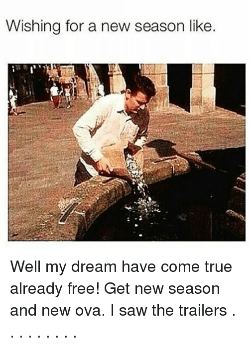 Wishing for a New Season Like Well My Dream Have Come True