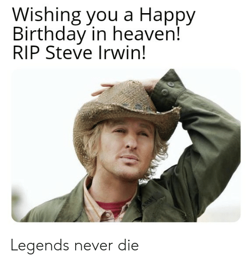 Wishing You A Happy Birthday In Heaven Rip Steve Irwin Legends