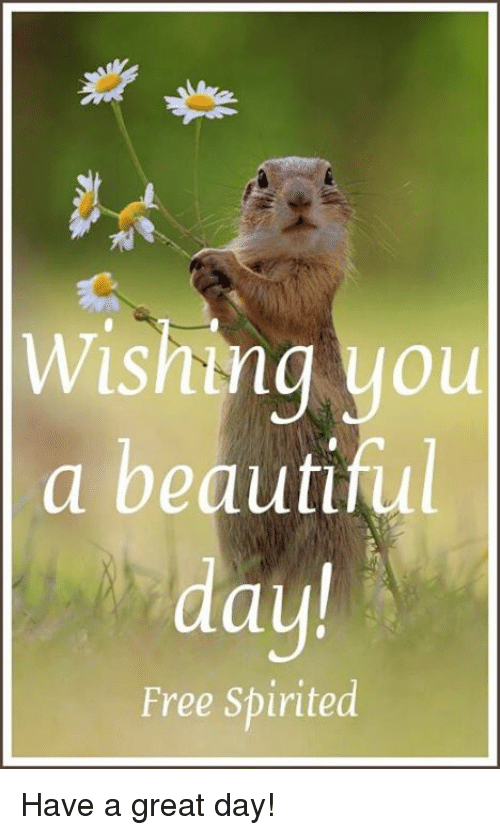 Wisming You a Beautiful Day! Free Spirited Have a Great Day