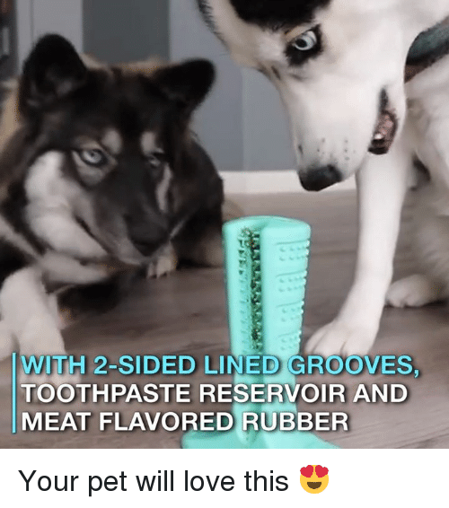 Love, Memes, and 🤖: WITH 2-SIDED LINED GROOVES.  TOOTHPASTE RESERVOIR AND  MEAT FLAVORED RUBBER Your pet will love this 😍