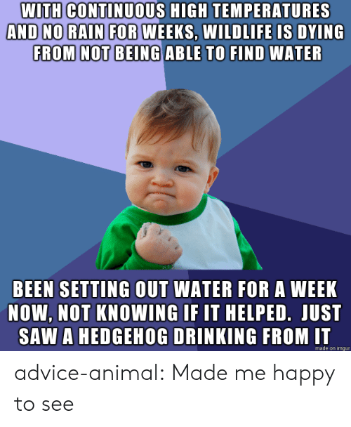 Advice, Drinking, and Saw: WITH CONTINUOUS HIGH TEMPERATURES  AND NO RAIN FOR WEEKS, WILDLIFE IS DYING  FROM NOT BEING ABLE TO FIND WATER  BEEN SETTING OUT WATER FOR A WEEK  NOW, NOT KNOWING IF IT HELPED. JUST  SAW A HEDGEHOG DRINKING FROM IT  made on imgur advice-animal:  Made me happy to see