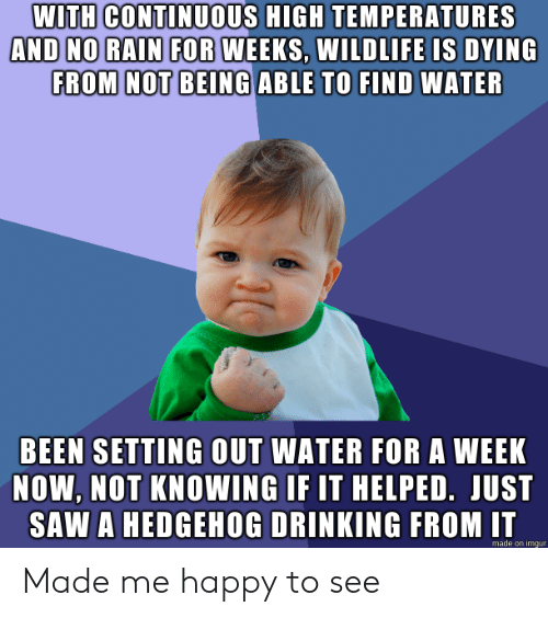 Drinking, Saw, and Happy: WITH CONTINUOUS HIGH TEMPERATURES  AND NO RAIN FOR WEEKS, WILDLIFE IS DYING  FROM NOT BEING ABLE TO FIND WATER  BEEN SETTING OUT WATER FOR A WEEK  NOW, NOT KNOWING IF IT HELPED. JUST  SAW A HEDGEHOG DRINKING FROM IT  made on imgur Made me happy to see