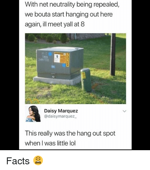 Facts, Lol, and Memes: With net neutrality being repealed,  we bouta start hanging out here  again, ill meet yall at 8  10  Daisy Marquez  @daisymarquez  This really was the hang out spot  when I was little lol Facts 😩