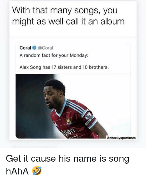 With That Many Songs You Might as Well Call It an Album Coral a