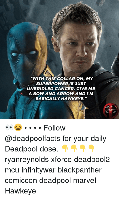 "Memes, Deadpool, and Cancer: WITH THIS COLLAR ON, MY  SUPERPOWER IS JUST  UNBRIDLED CANCER. GIVE ME  A BOW AND ARROWAND I'M  BASICALLY HAWKEYE.""  DEADPOOL  FACT 👀😆 • • • • Follow @deadpoolfacts for your daily Deadpool dose. 👇👇👇👇 ryanreynolds xforce deadpool2 mcu infinitywar blackpanther comiccon deadpool marvel Hawkeye"