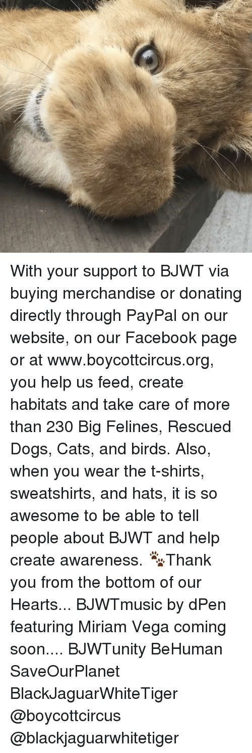 Memes, Paypal, and 🤖: With your support to BJWT via buying merchandise or donating directly through PayPal on our website, on our Facebook page or at www.boycottcircus.org, you help us feed, create habitats and take care of more than 230 Big Felines, Rescued Dogs, Cats, and birds. Also, when you wear the t-shirts, sweatshirts, and hats, it is so awesome to be able to tell people about BJWT and help create awareness. 🐾Thank you from the bottom of our Hearts... BJWTmusic by dPen featuring Miriam Vega coming soon.... BJWTunity BeHuman SaveOurPlanet BlackJaguarWhiteTiger @boycottcircus @blackjaguarwhitetiger