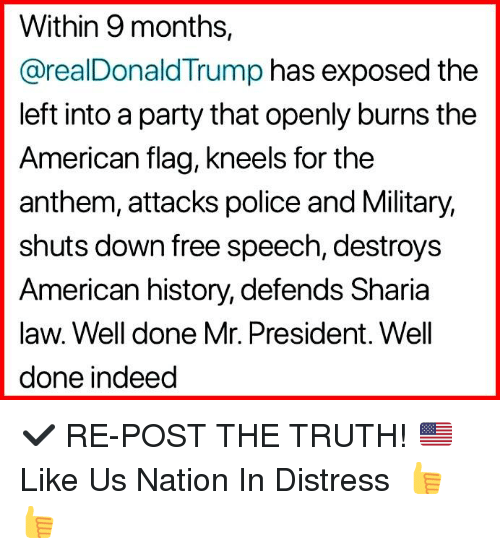 Memes, Party, and Police: Within 9 months,  @realDonaldTrump has exposed the  left into a party that openly burns the  American flag, kneels for the  anthem, attacks police and Military,  shuts down free speech, destroys  American history, defends Sharia  law. Well done Mr. President. Well  done indeed ✔️ RE-POST THE TRUTH! 🇺🇸 Like Us ►Nation In Distress 👍👍