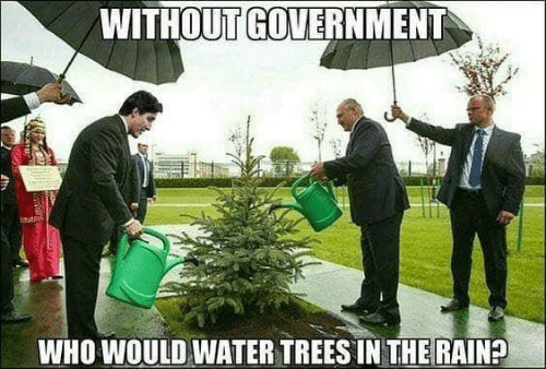 https://pics.me.me/without-government-who-would-water-trees-in-the-rain-46609402.png
