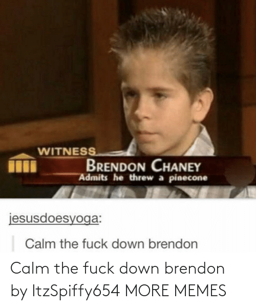 Dank, Memes, and Target: WITNESS  BRENDON CHANEY  Admits he threw a pinecone  jesusdoesyoga:  Calm the fuck down brendon Calm the fuck down brendon by ItzSpiffy654 MORE MEMES