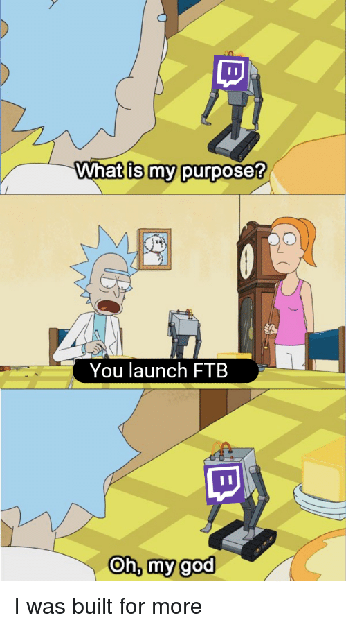 Wnat Is My Purposes You Launch FTB Oh Mygod | Ftb Meme on ME ME