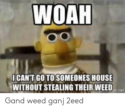 Weed, House, and Stealing: WOAH  ICANT GO TO SOMEONES HOUSE  WITHOUT STEALING THEIR WEED  jauia Gand weed ganj 2eed