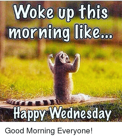 Good Morning Meme Wednesday : Woke up this morning like happy wednesday good
