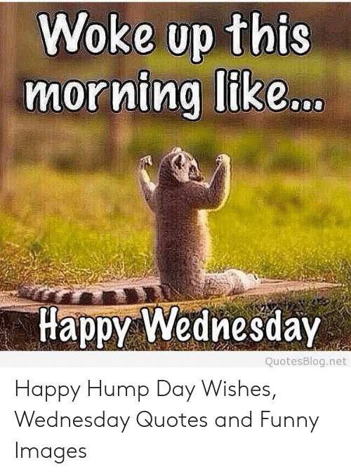 woke up this morning like happy wednesday quotesblognet happy hump