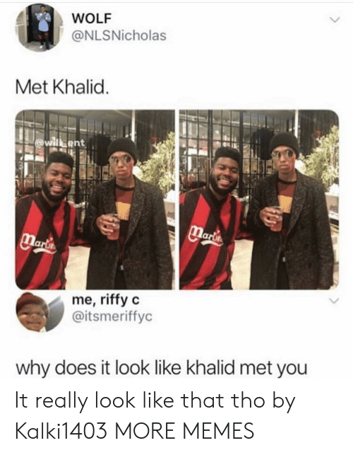 Dank, Memes, and Target: WOLF  @NLSNicholas  Met Khalid  me, riffy c  @itsmeriffyc  why does it look like khalid met you It really look like that tho by Kalki1403 MORE MEMES