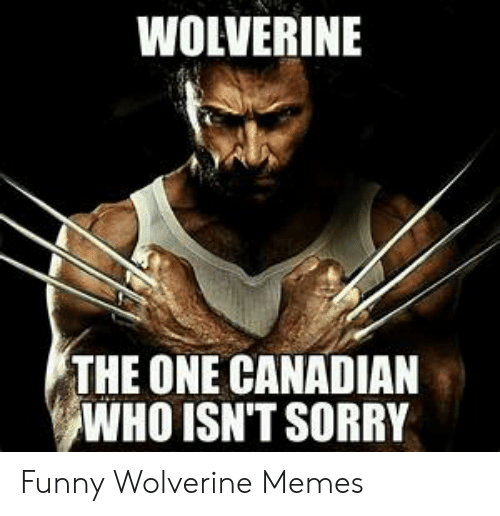 39e2849066a WOLVERINE THE ONE CANADIAN WHO ISN'T SORRY Funny Wolverine Memes ...