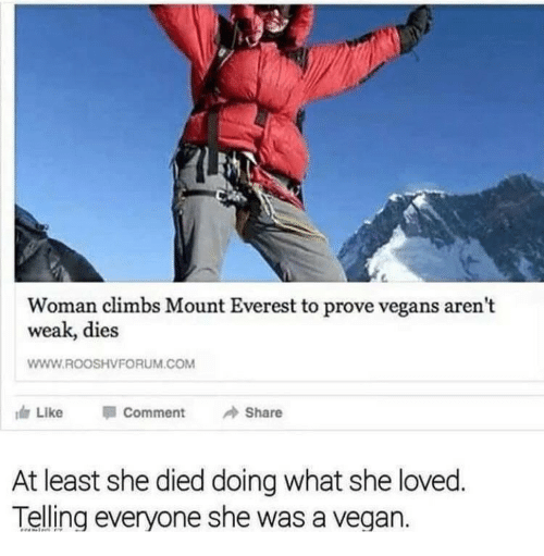 Vegan, Everest, and Com: Woman climbs Mount Everest to prove vegans arent  weak, dies  WWW.ROOSHVFORUM.COM  Like  Comment  Share  At least she died doing what she loved  Telling everyone she was a vegan.