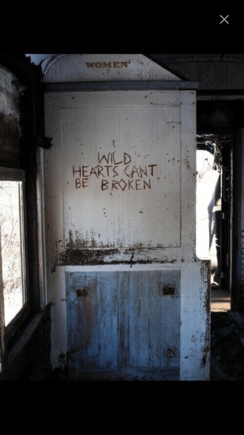 Hearts, Wild, and Women: WOMEN  WILD  HEARTS (ANT  BE BROKEN