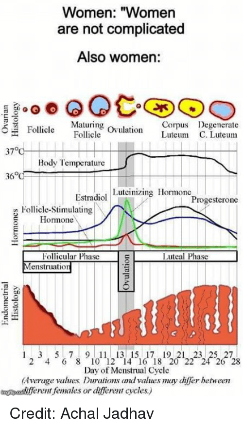 """Memes, Women, and 🤖: Women: """"Women  are not complicated  Also women:  Maturing ovulation Luteum C  Corps Degenerate  Follicle Follcle  37°  Body Temperature  Estradiol Luteinizing Hormonc  Progesterone  Follicle-Stimulating  Homone  Follicular Phasc  enstruation  Luteal Phasc  cn  1 2 3 4 5  7 8 9 1011121314151617181201222  26  Day of Mcnstrual Cycle  Average values Durations dvalues may differ behween  eent females or dfferent cycles) Credit: Achal Jadhav"""