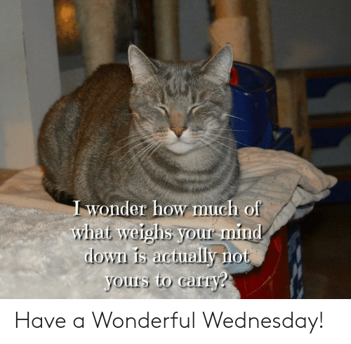 Memes, Wednesday, and Wonder: wonder how much of  what weighs your rmind  lo  yours to carry? Have a Wonderful Wednesday!