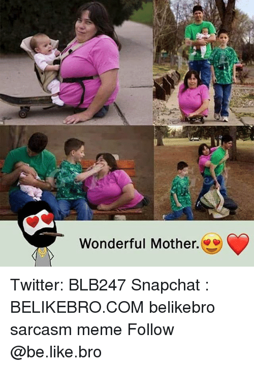 Be Like, Meme, and Memes: Wonderful Mother. Twitter: BLB247 Snapchat : BELIKEBRO.COM belikebro sarcasm meme Follow @be.like.bro