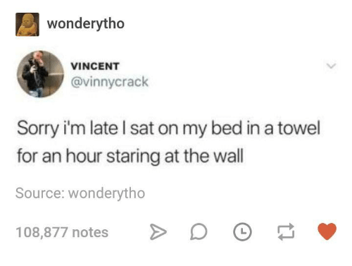 Sorry, Humans of Tumblr, and Sat: wonderytho  VINCENT  @vinnycrack  Sorry i'm late l sat on my bed in a towel  for an hour staring at the wall  Source: wonderytho  108,877 notes