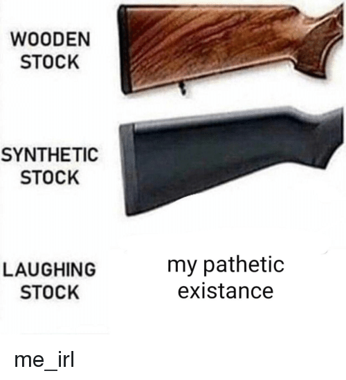 Irl, Me IRL, and Laughing: WOODEN  STOCK  SYNTHETIC  STOCK  LAUGHING  STOCK  my pathetic  existance me_irl
