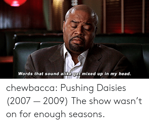 Chewbacca, Head, and Tumblr: Words that sound alike get mixed up in my head. chewbacca:  Pushing Daisies (2007 — 2009)  The show wasn't on for enough seasons.