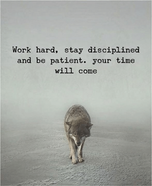 Work, Patient, and Time: Work hard, stay disciplined  and be patient. your time  will come