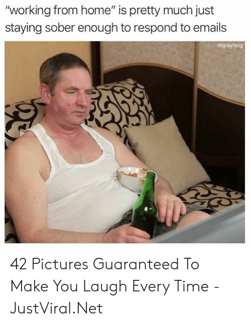 """Home, Pictures, and Time: """"working from home"""" is pretty much just  staying sober enough to respond to emails  drgrayfang 42 Pictures Guaranteed To Make You Laugh Every Time - JustViral.Net"""