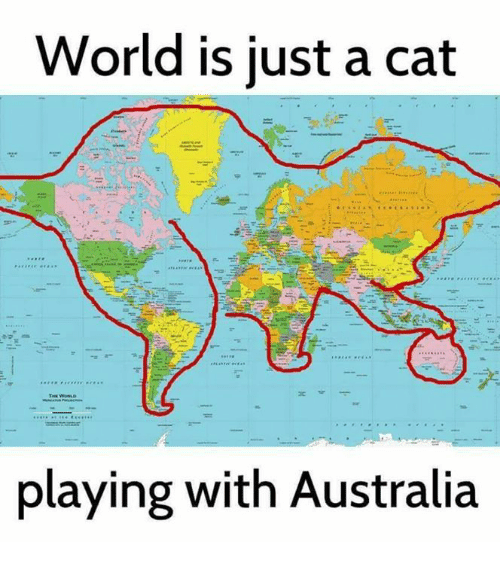 World is just a cat playing with australia meme on me memes australia and world world is just a cat playing with australia gumiabroncs Choice Image